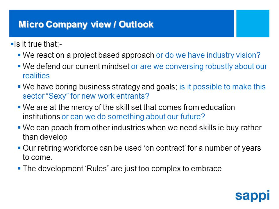 Micro Company view / Outlook Is it true that;- We react on a project based approach or do we have industry vision.