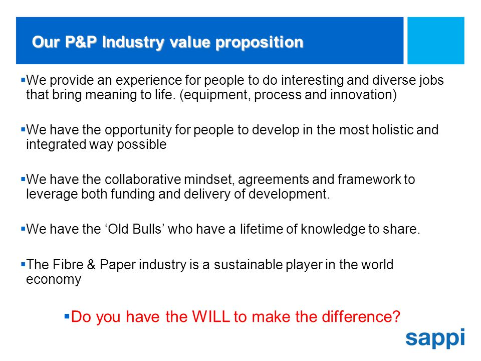 Our P&P Industry value proposition We provide an experience for people to do interesting and diverse jobs that bring meaning to life.