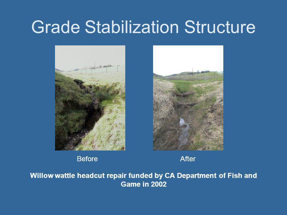 Grade Stabilization Structure BeforeAfter Willow wattle headcut repair funded by CA Department of Fish and Game in 2002