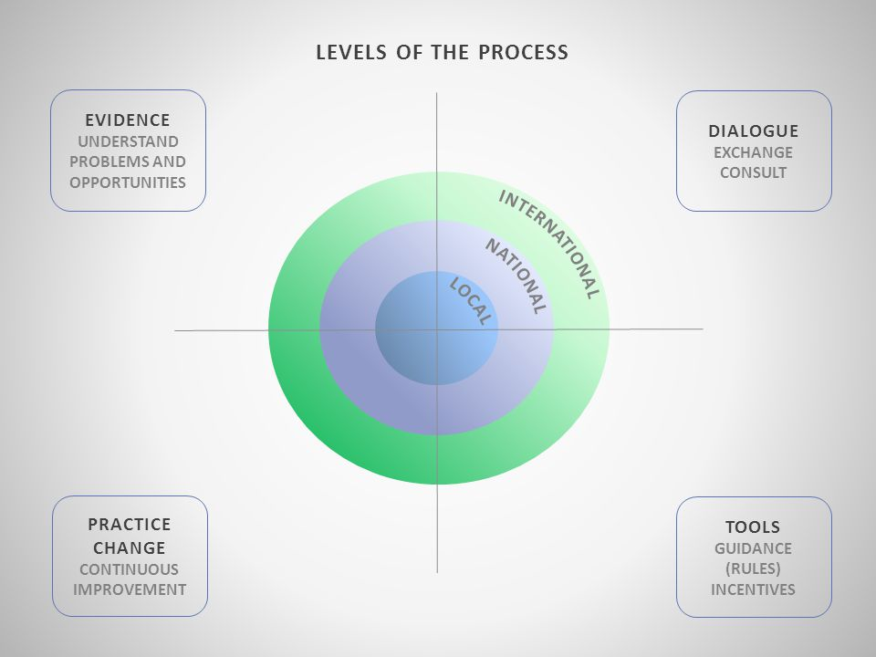 LEVELS OF THE PROCESS EVIDENCE UNDERSTAND PROBLEMS AND OPPORTUNITIES DIALOGUE EXCHANGE CONSULT PRACTICE CHANGE CONTINUOUS IMPROVEMENT TOOLS GUIDANCE (RULES) INCENTIVES