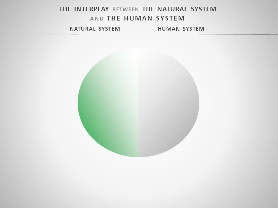 THE INTERPLAY BETWEEN THE NATURAL SYSTEM AND THE HUMAN SYSTEM NATURAL SYSTEM HUMAN SYSTEM