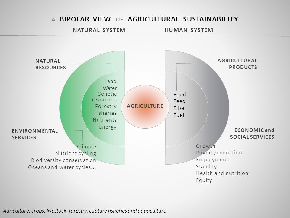 AGRICULTURE Agriculture: crops, livestock, forestry, capture fisheries and aquaculture NATURAL SYSTEM HUMAN SYSTEM A BIPOLAR VIEW OF AGRICULTURAL SUSTAINABILITY NATURAL RESOURCES Land Water Genetic resources Forestry Fisheries Nutrients Energy AGRICULTURAL PRODUCTS Food Feed Fiber Fuel ECONOMIC and SOCIAL SERVICES Growth Poverty reduction Employment Stability Health and nutrition Equity ENVIRONMENTAL SERVICES Climate Nutrient cycling Biodiversity conservation Oceans and water cycles...