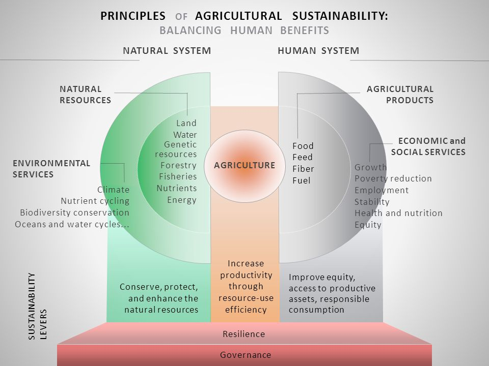 Improve equity, access to productive assets, responsible consumption Increase productivity through resource-use efficiency Conserve, protect, and enha