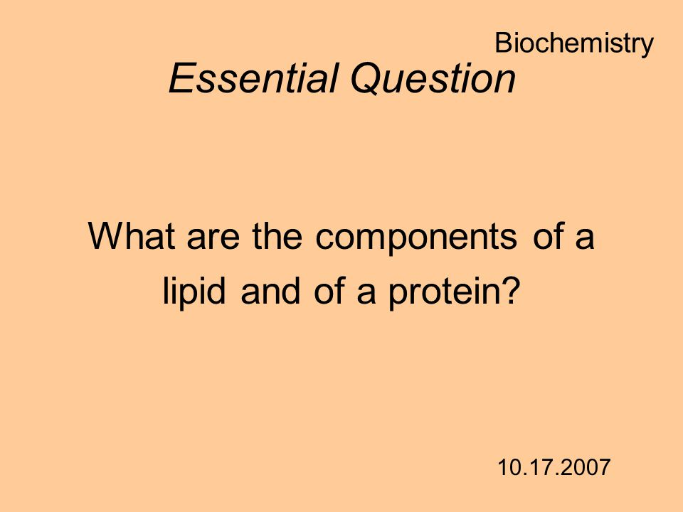 What are the components of a lipid and of a protein? Essential Question 10.17.2007 Biochemistry