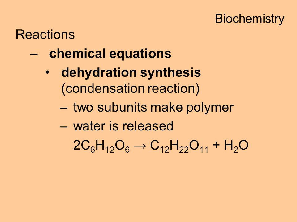 Reactions –chemical equations dehydration synthesis (condensation reaction) –two subunits make polymer –water is released 2C 6 H 12 O 6 C 12 H 22 O 11 + H 2 O Biochemistry