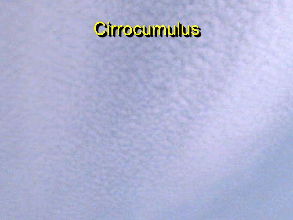 CirrostratusCirrostratus Condensation Trails (Contrails)
