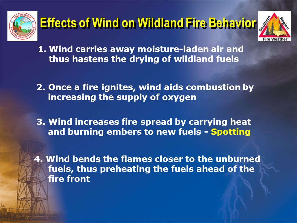 Effects of Wind on Wildland Fire Behavior 1.Wind carries away moisture-laden air and thus hastens the drying of wildland fuels 2.