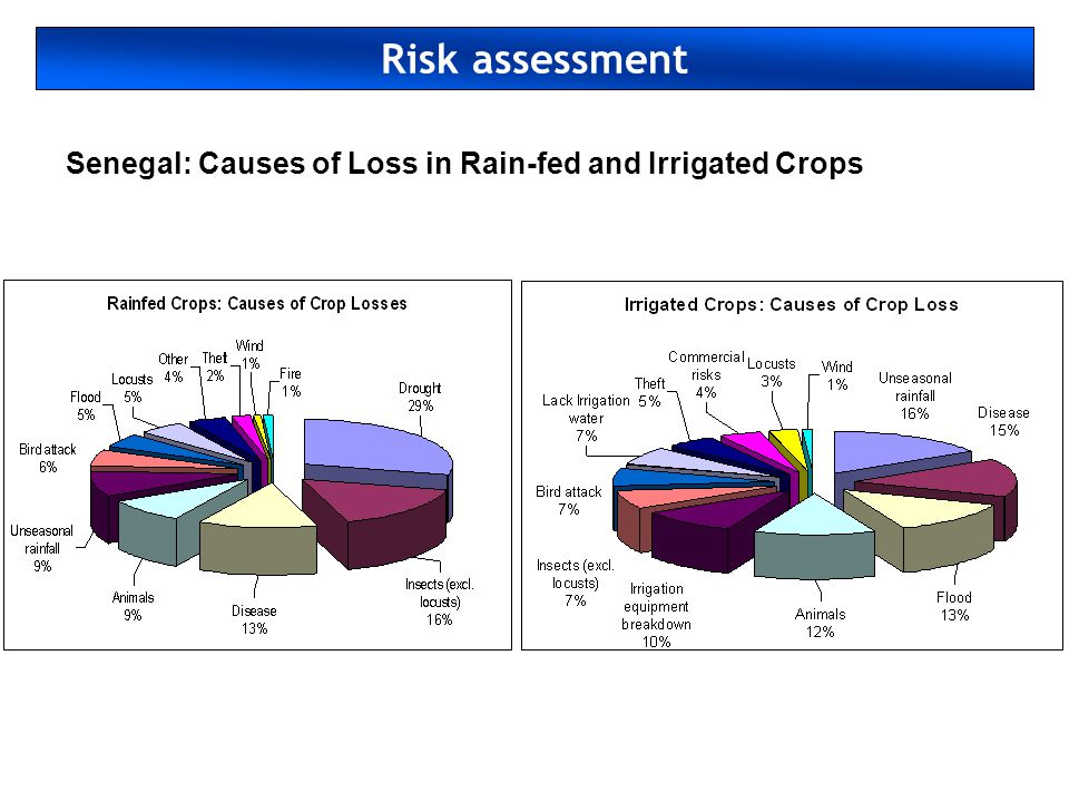 Risk assessment Senegal: Causes of Loss in Rain-fed and Irrigated Crops