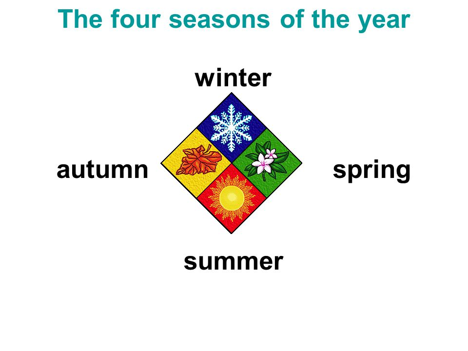 winter spring summer autumn The four seasons of the year