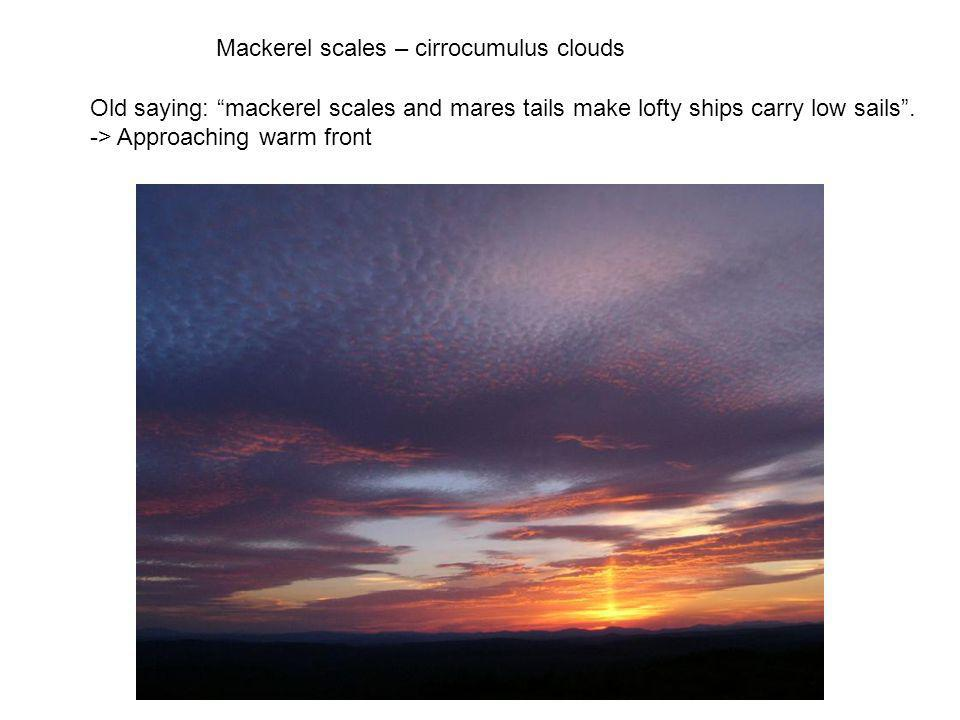 Mackerel scales – cirrocumulus clouds Old saying: mackerel scales and mares tails make lofty ships carry low sails. -> Approaching warm front