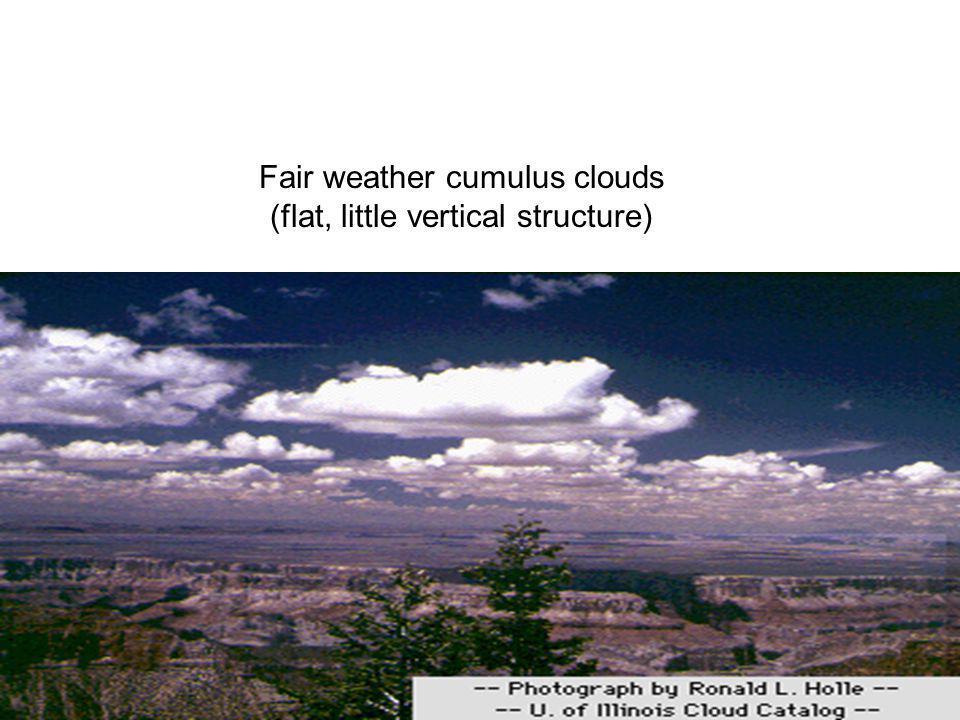 Fair weather cumulus clouds (flat, little vertical structure)
