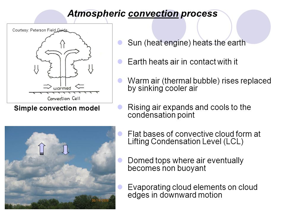 Atmospheric convection process Sun (heat engine) heats the earth Earth heats air in contact with it Warm air (thermal bubble) rises replaced by sinking cooler air Rising air expands and cools to the condensation point Flat bases of convective cloud form at Lifting Condensation Level (LCL) Domed tops where air eventually becomes non buoyant Evaporating cloud elements on cloud edges in downward motion Courtesy: Peterson Field Guide Simple convection model