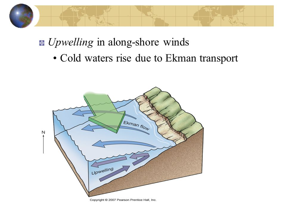 Upwelling in along-shore winds Cold waters rise due to Ekman transport