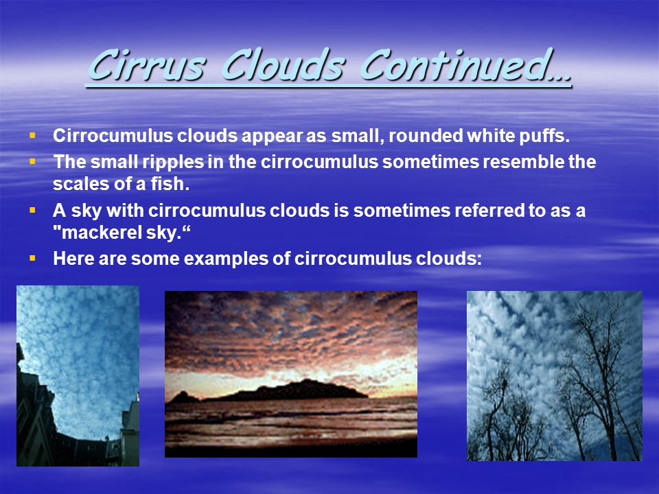 Cirrus Clouds Continued… Cirrocumulus clouds appear as small, rounded white puffs. The small ripples in the cirrocumulus sometimes resemble the scales