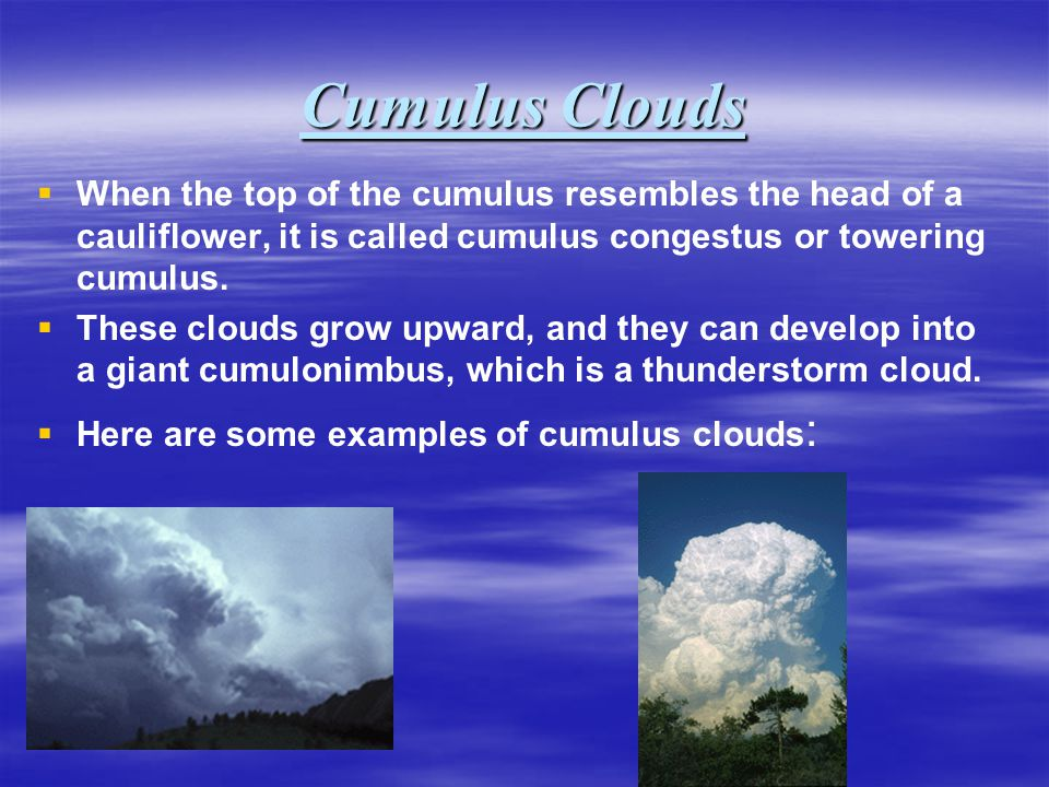 Cumulus Clouds When the top of the cumulus resembles the head of a cauliflower, it is called cumulus congestus or towering cumulus. These clouds grow