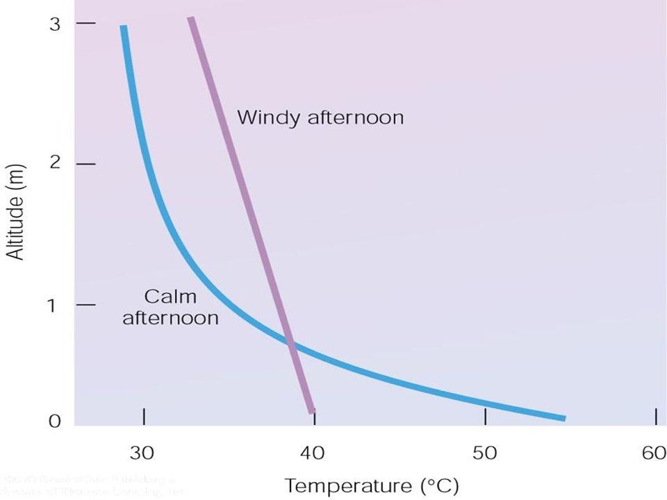 7.5 cm Air Temperature ( C) Aug 18Aug 19Aug 21Aug 22, 2005Aug 20 7.5 cm Air Temperatures at Lakeview Ridge, WLNP