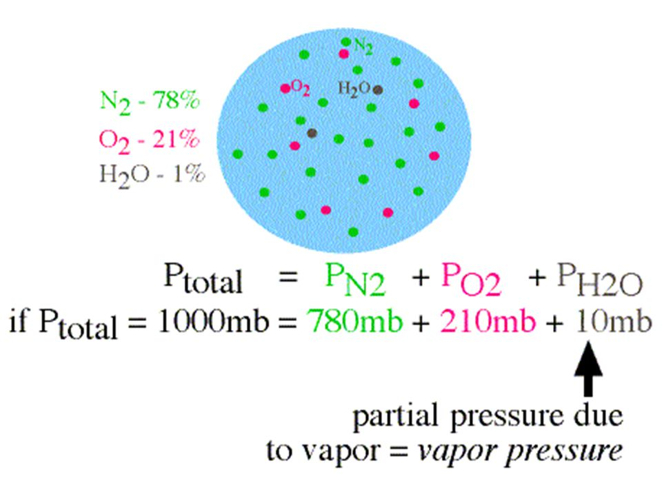 The portion of atmospheric pressure that is made up of water vapour molecules (mb or kPa) SATURATION VAPOUR PRESSURE: The pressure that water vapour molecules would exert if the air were saturated (at a given temperature)