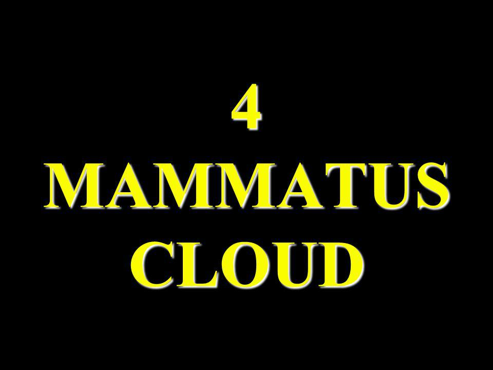 4 MAMMATUS CLOUD