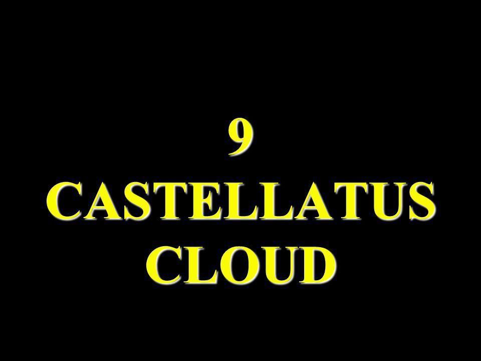 9 CASTELLATUS CLOUD