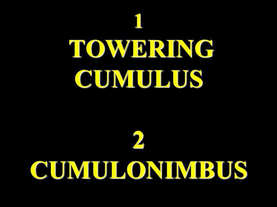1 TOWERING CUMULUS 2 CUMULONIMBUS