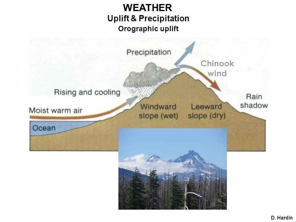 D. Hardin Uplift & Precipitation Orographic uplift Chinook wind WEATHER