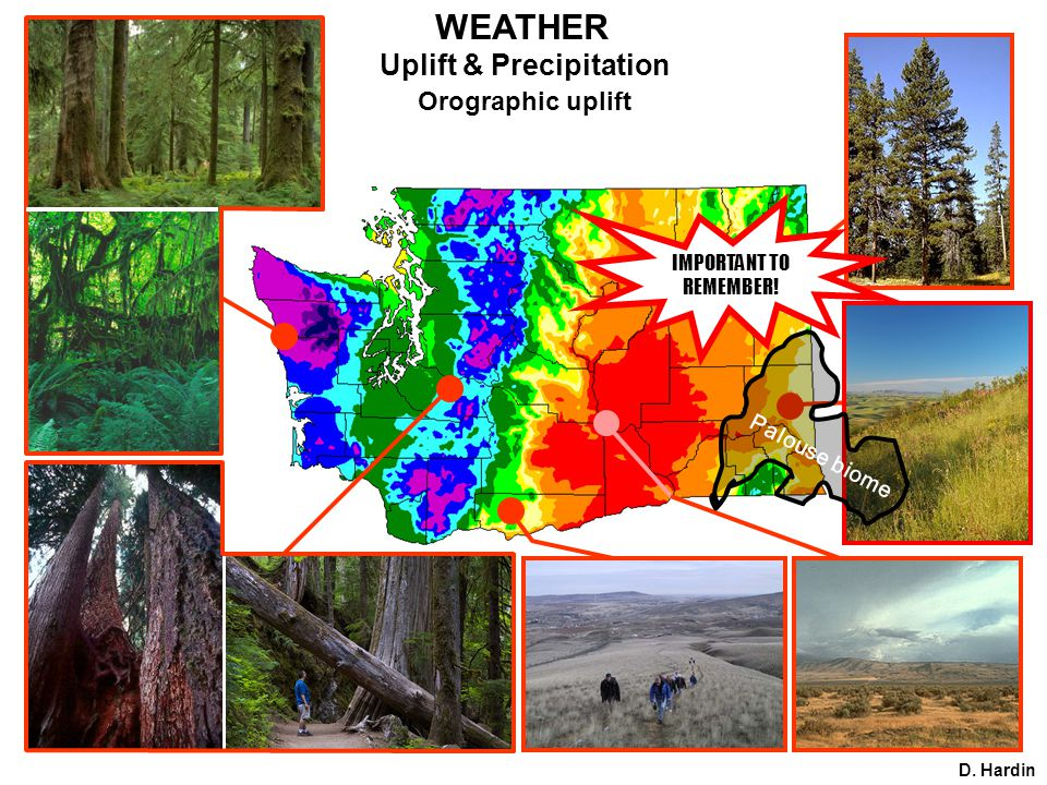 Uplift & Precipitation Orographic uplift D. Hardin WEATHER Palouse biome IMPORTANT TO REMEMBER!