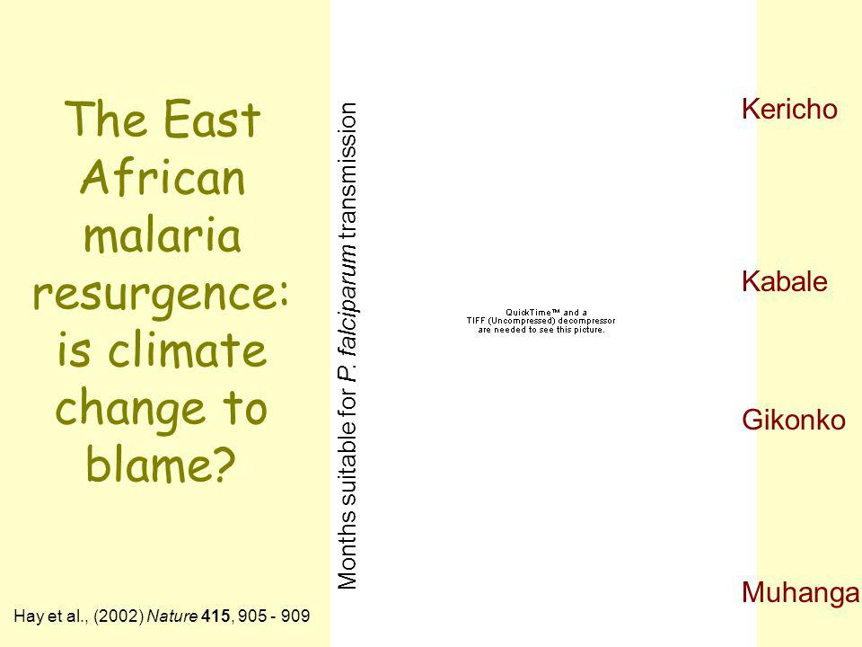 The East African malaria resurgence: is climate change to blame? Kericho Kabale Gikonko Muhanga Hay et al., (2002) Nature 415, 905 - 909 Months suitab
