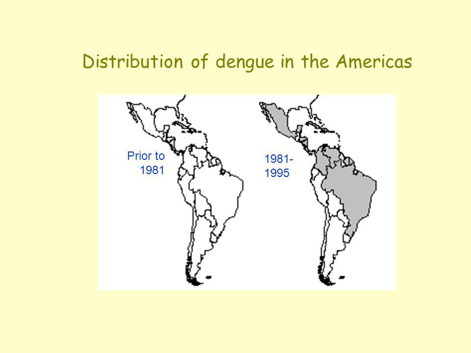1981- 1995 Prior to 1981 Distribution of dengue in the Americas