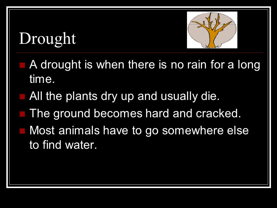 Drought A drought is when there is no rain for a long time. All the plants dry up and usually die. The ground becomes hard and cracked. Most animals h