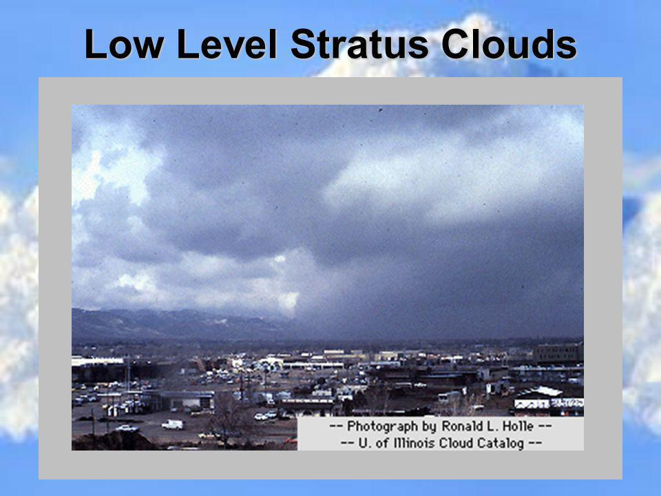 Low Level Stratus Clouds
