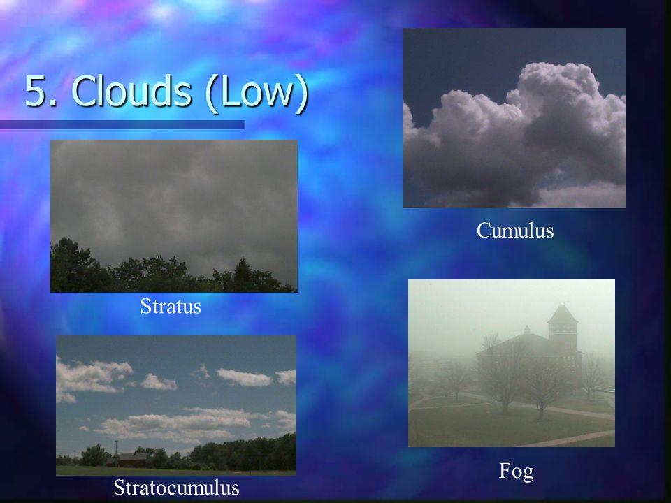 5. Clouds (Low) Cumulus Fog Stratocumulus Stratus