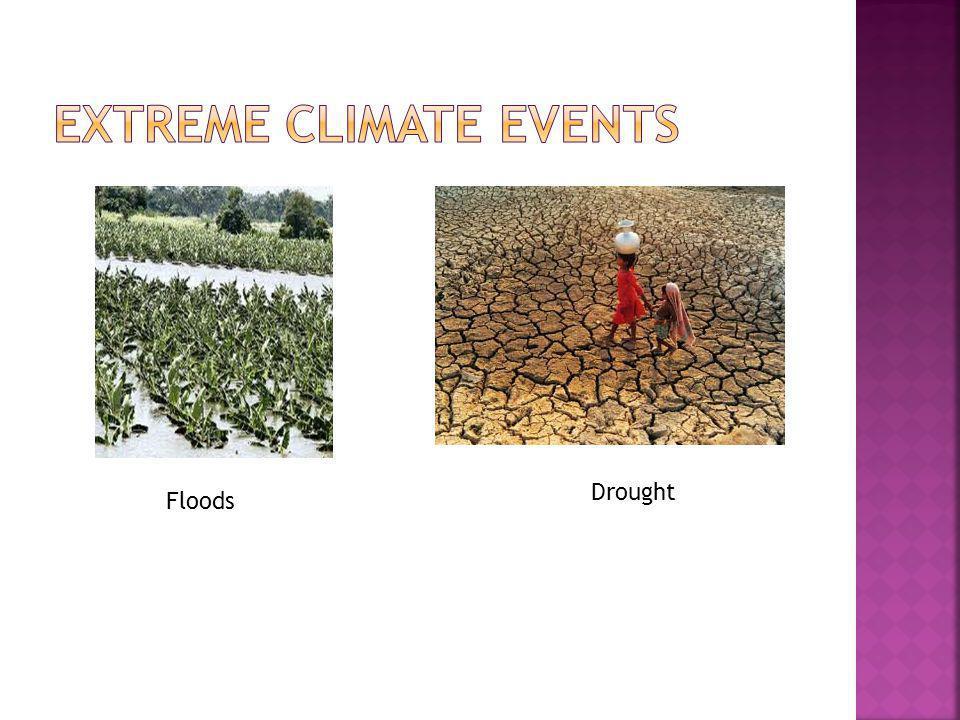 Floods Drought