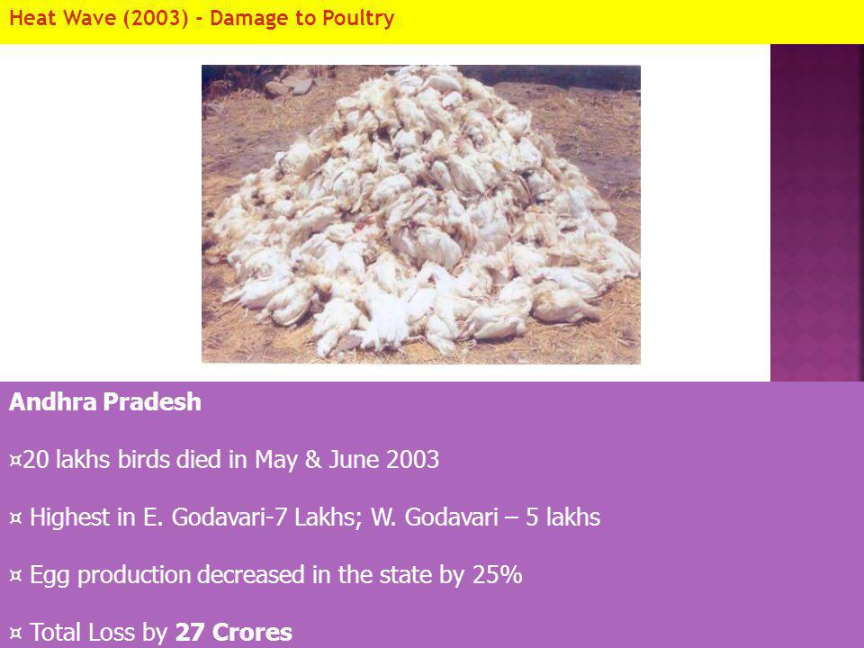 Heat Wave (2003) - Damage to Poultry Andhra Pradesh ¤20 lakhs birds died in May & June 2003 ¤ Highest in E. Godavari-7 Lakhs; W. Godavari – 5 lakhs ¤