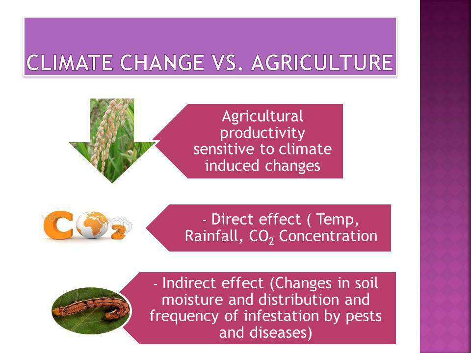 Agricultural productivity sensitive to climate induced changes - Direct effect ( Temp, Rainfall, CO2 Concentration - Indirect effect (Changes in soil