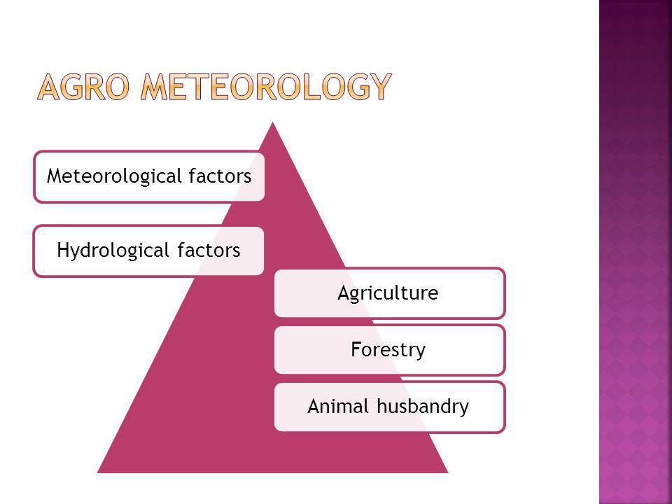 Meteorological factorsHydrological factorsAgricultureForestryAnimal husbandry