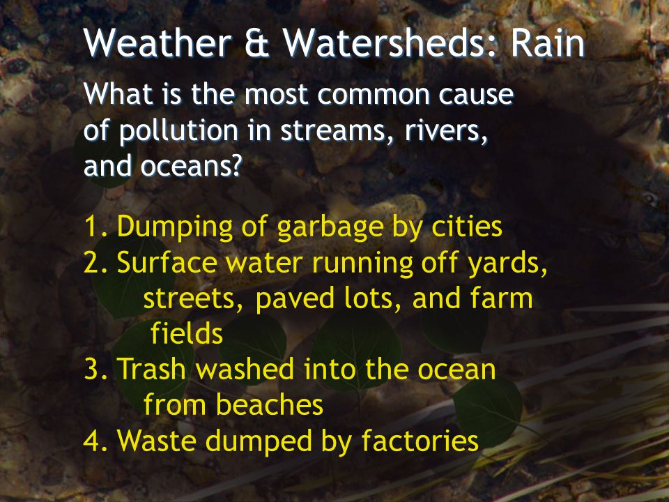 Weather & Watersheds: Rain What is the most common cause of pollution in streams, rivers, and oceans? 1.Dumping of garbage by cities 2.Surface water r