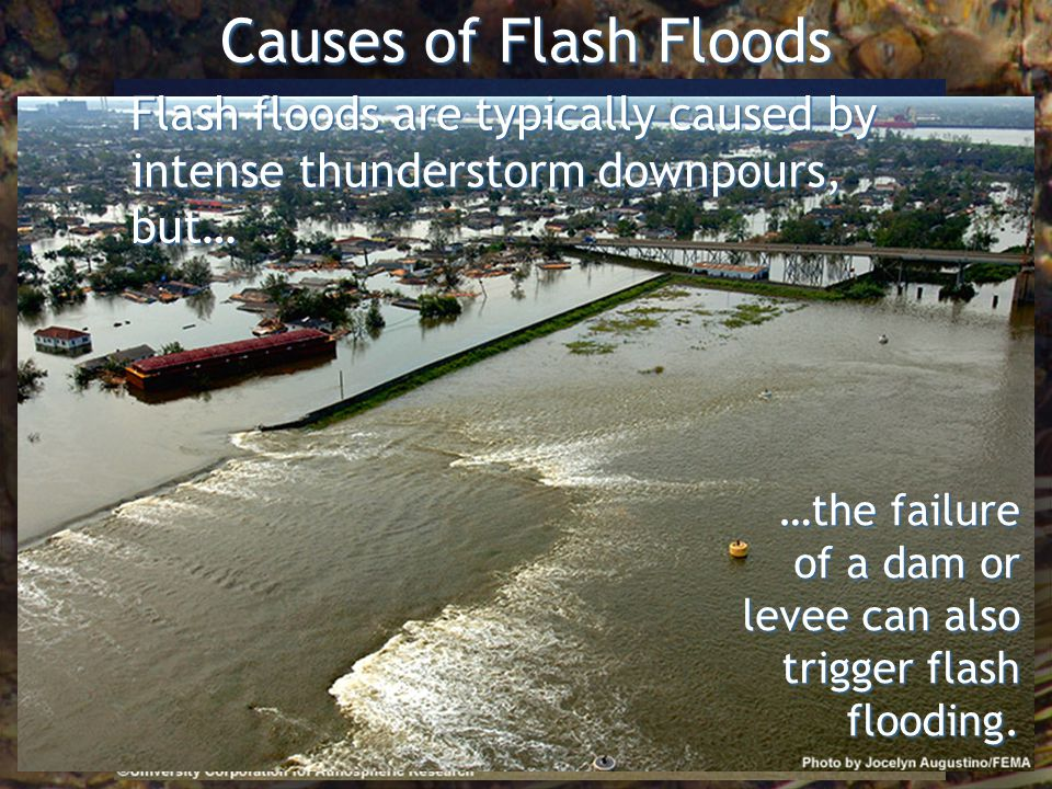 Causes of Flash Floods Flash floods are typically caused by intense thunderstorm downpours, but… …the failure of a dam or levee can also trigger flash