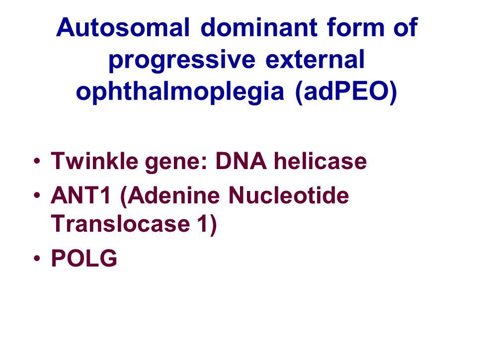 Autosomal dominant form of progressive external ophthalmoplegia (adPEO) Twinkle gene: DNA helicase ANT1 (Adenine Nucleotide Translocase 1) POLG