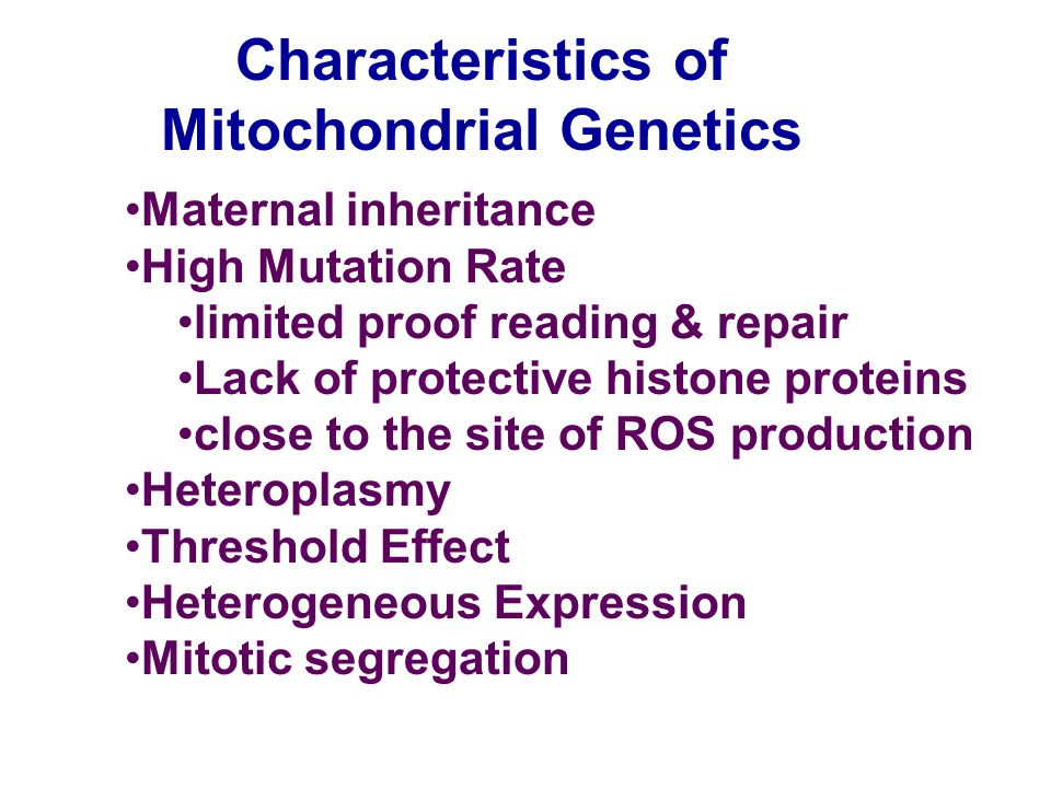 Characteristics of Mitochondrial Genetics Maternal inheritance High Mutation Rate limited proof reading & repair Lack of protective histone proteins c