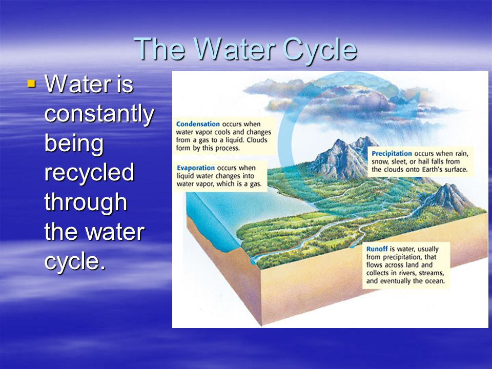 Types of air masses Maritime (m) Forms over water; wet Continental ( c ) Forms over land; dry Polar ( P) Forms over polar regions; cold Tropical (T) develops over the tropics: warm