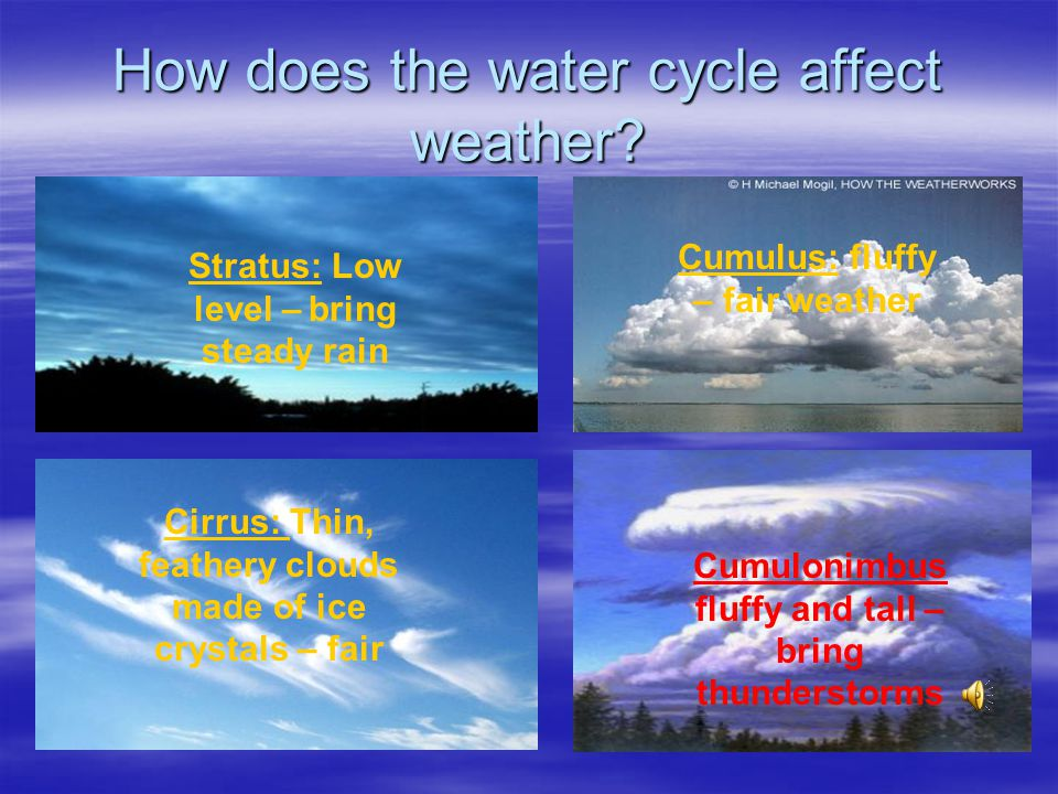 How does the water cycle affect weather? Clouds form when water vapor in the air condenses. A cloud that forms close to the ground is fog. Clouds form