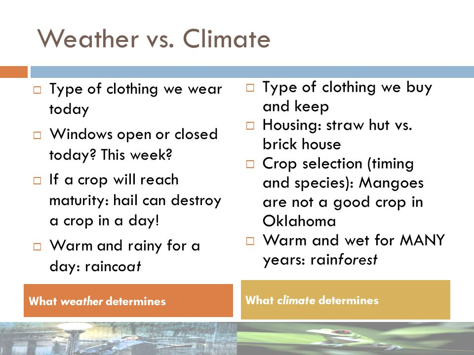 Type of clothing we wear today Windows open or closed today? This week? If a crop will reach maturity: hail can destroy a crop in a day! Warm and rain