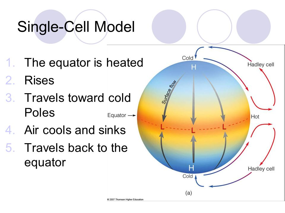 Single-Cell Model 1.The equator is heated 2.Rises 3.Travels toward cold Poles 4.Air cools and sinks 5.Travels back to the equator