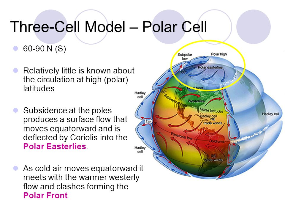 Three-Cell Model – Polar Cell 60-90 N (S) Relatively little is known about the circulation at high (polar) latitudes Subsidence at the poles produces