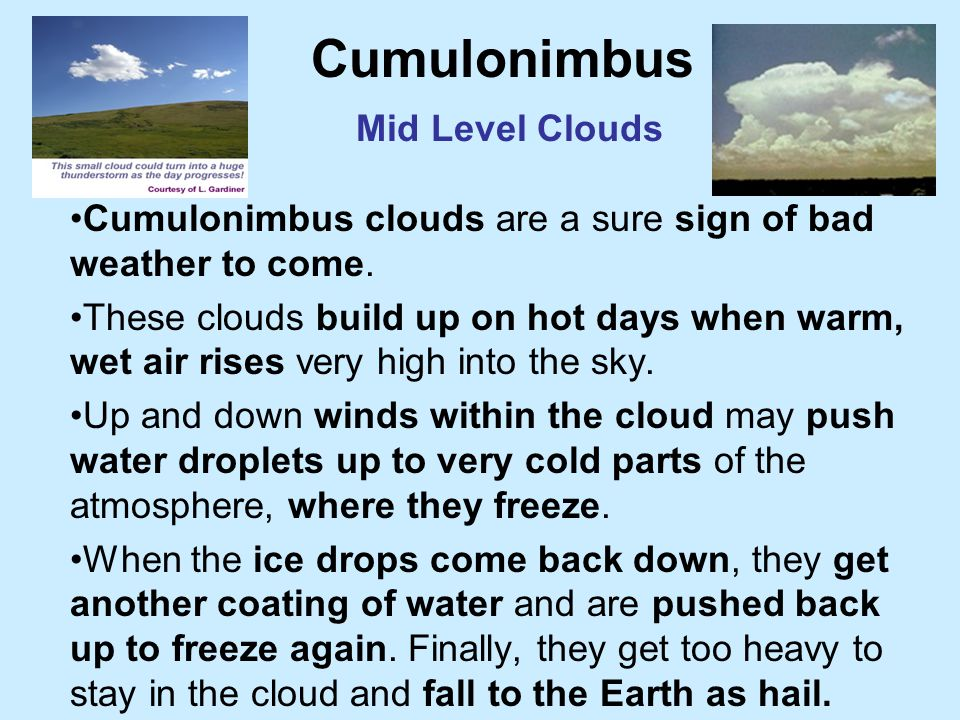 Cumulus Clouds Mid Level Clouds Cumulus clouds are the fluffy, white cotton ball or cauliflower-looking clouds with sharp outlines. They are