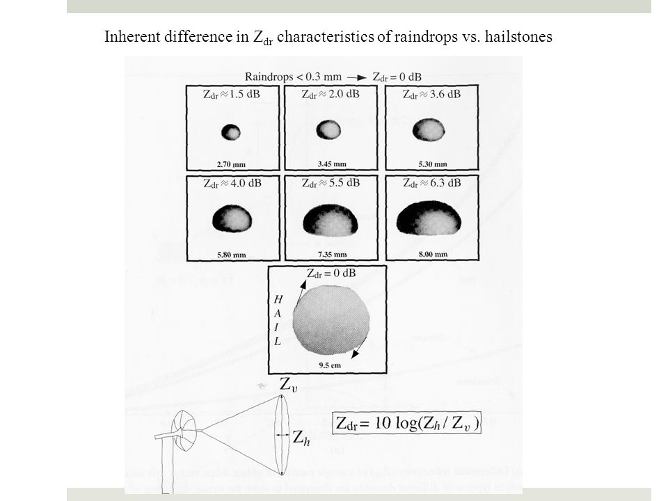 Inherent difference in Z dr characteristics of raindrops vs. hailstones