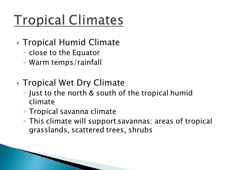 Tropical Humid Climate close to the Equator Warm temps/rainfall Tropical Wet Dry Climate Just to the north & south of the tropical humid climate Tropi