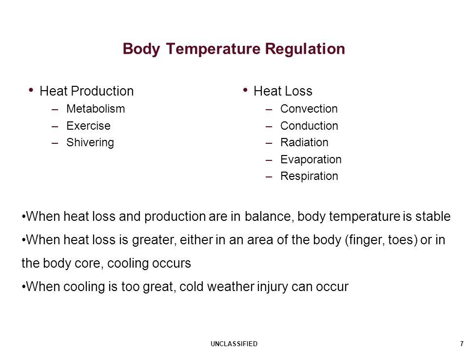 Heat Production –Metabolism –Exercise –Shivering Heat Loss –Convection –Conduction –Radiation –Evaporation –Respiration Body Temperature Regulation 7