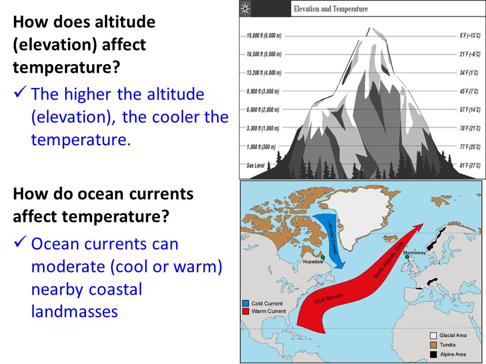 How does altitude (elevation) affect temperature? The higher the altitude (elevation), the cooler the temperature. How do ocean currents affect temper