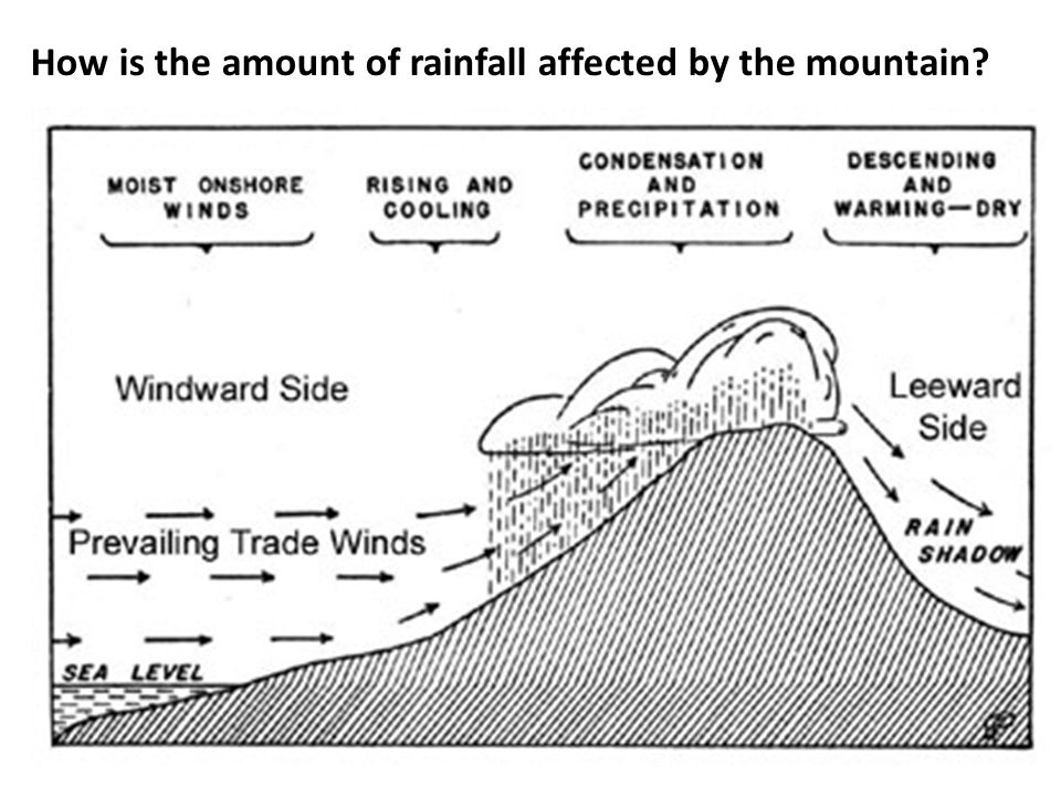 How is the amount of rainfall affected by the mountain?